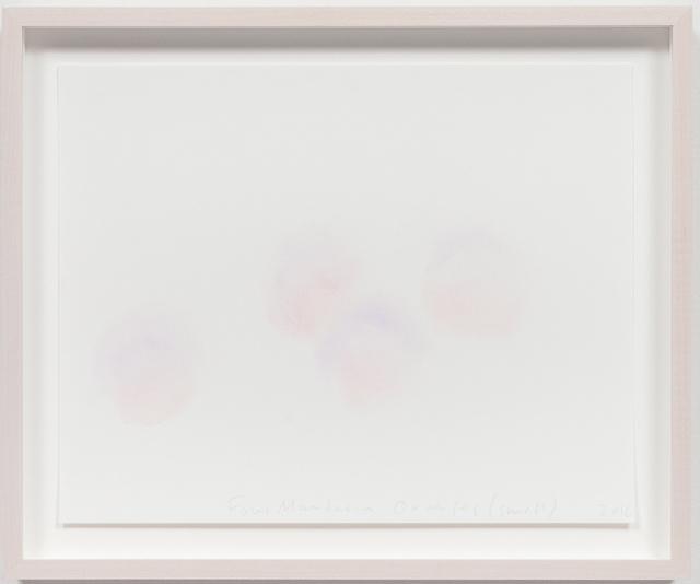 , 'Four Mandarin Oranges (Smell),' 2016, Rhona Hoffman Gallery