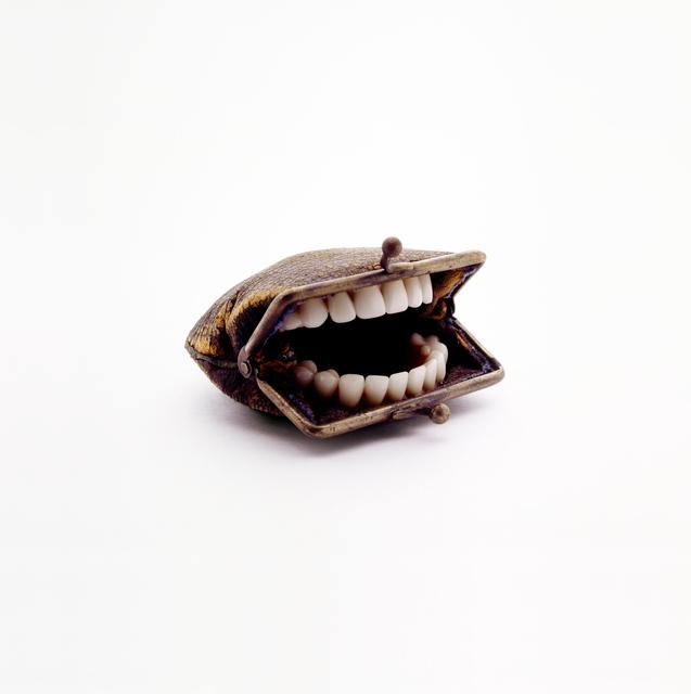 , 'Purse with Teeth,' 2010, Flowers