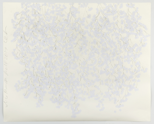 Donald Sultan, 'White Mimosa Dec 10 2017', 2017, Mary Ryan Gallery, Inc
