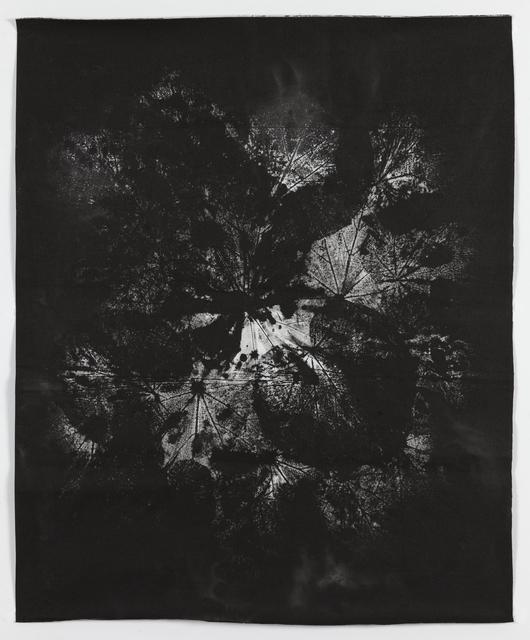 , 'The Transit of Venus XXVI (New Moon),' 2014, Collectors Contemporary