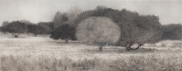 George Tzannes, 'Olive Grove', 2010, Arco Gallery