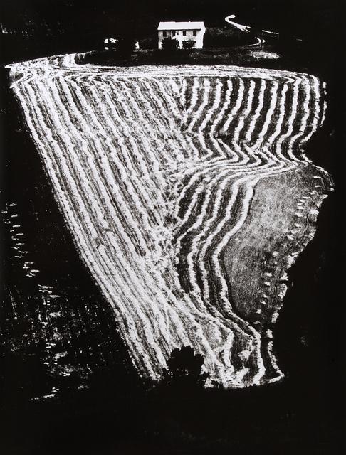 , 'Presa di coscienza sulla natura,' 1954-2000, SAGE Paris