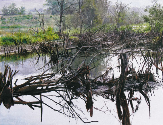 , 'Charlotte Valley Swamp,' , Plus One Gallery