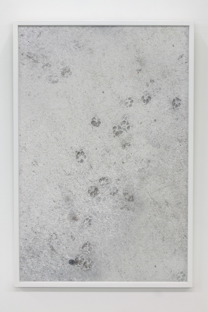 , 'Erratic Dog Behaviour,' 2016, Tatjana Pieters