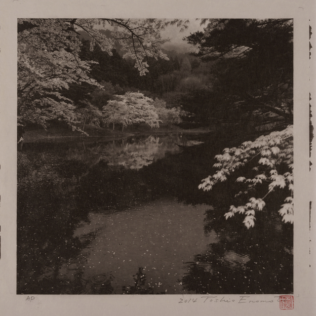 , 'Rainy Day by Handanuma Swamp 2, Date-gun, Fukushima,' 2014, Micheko Galerie