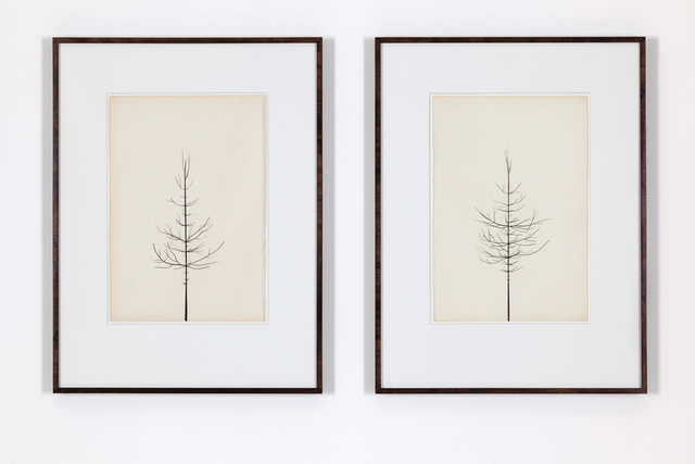 , 'Pair of Winter Drawings 22vs25 and 17vs20, 20 February 2014,' 2014, Ingleby Gallery