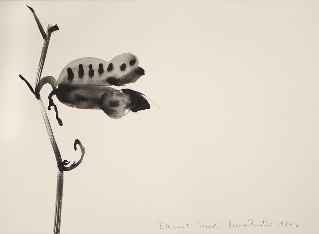 , 'Elegant Weed,' 1989, Imlay Gallery