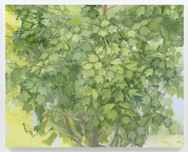 , 'Summer Maple 2016,' 2016, Alexander and Bonin