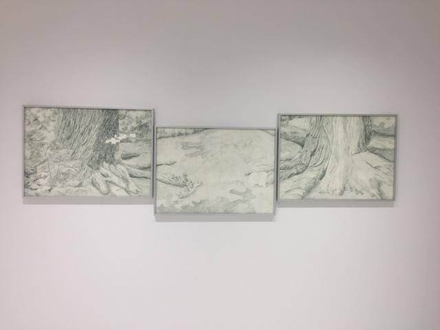, 'Distance between a Liriodendron Tulipifera (USA) and a Sugar Maple (Canada) at Brooklyn Botanic Garden,' 2017, Sapar Contemporary