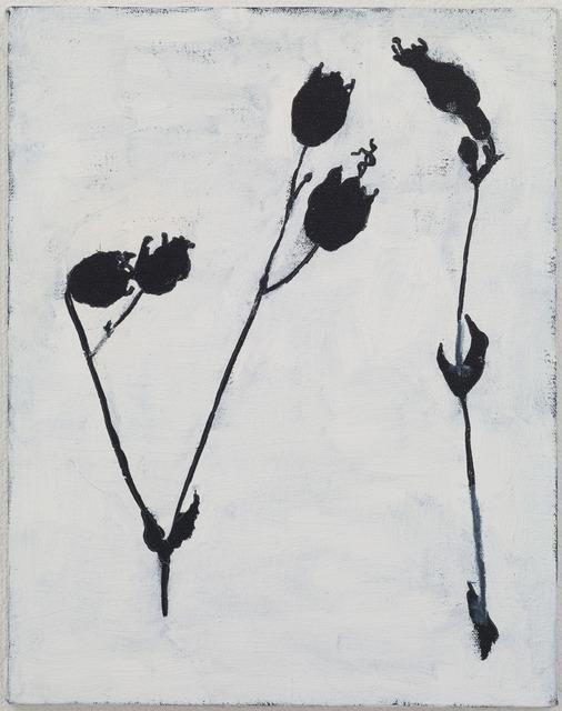 , 'Bethany Plants,' 2004, Kamakura