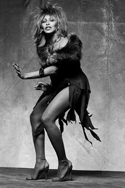 Norman Seeff, 'Tina in Motion; Tina Turner, Los Angeles', 1983, Photography, Archival Pigment Print, Staley-Wise Gallery