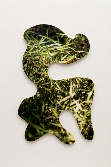 , 'grass dragon,' 2016, Erin Cluley Gallery