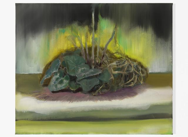 Pierpaolo Campanini, 'Untitled', 2013, kaufmann repetto