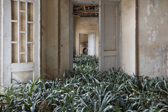 , 'Home 3,' 2017, Robert Klein Gallery