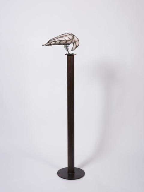 , 'Crows and Ravens, Series B #2,' 2012, Gazelli Art House