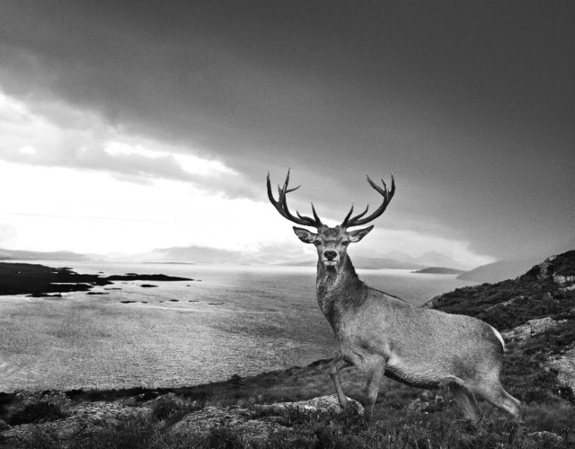 David Yarrow, 'Over The Sea To Skye', 2017, Photography, 315gsm Hahnemühle photo rag Baryta paper, Isabella Garrucho Fine Art