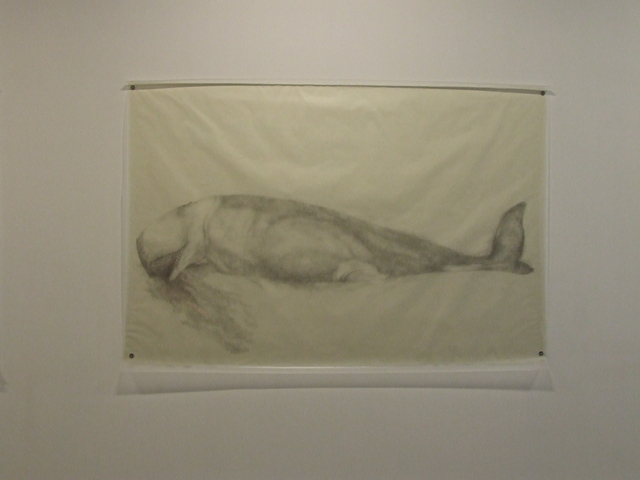 , 'Whale,' 2009, Fort Worth Contemporary Arts