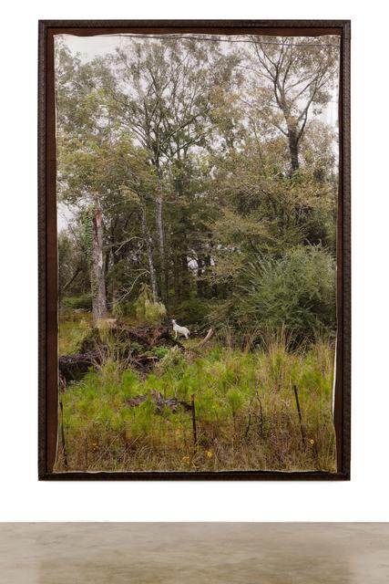 , 'Bayou Baroque,' 2014, Foto Relevance