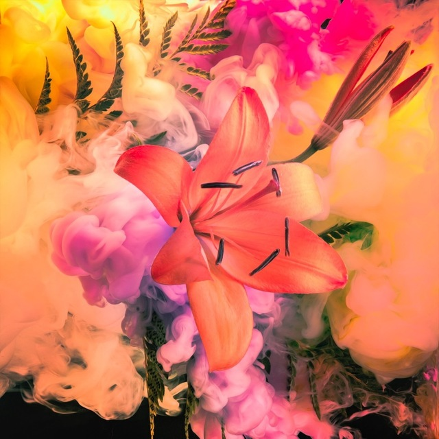 Javiera Estrada, 'The Miami', 2017, L'Atelier Ldep Concierge & Gallery