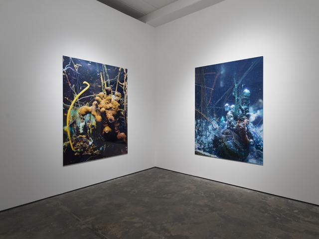 , 'Exhibition view Wentrup,' 2015, Wentrup