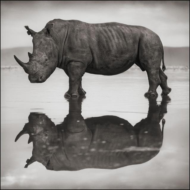Nick Brandt, 'Rhino on Lake, Nakuru 2007', 2007, photo-eye Gallery