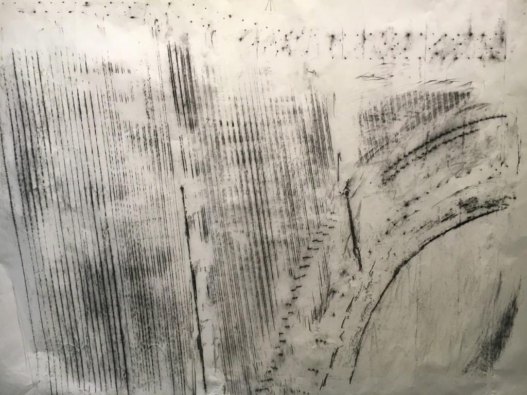 Manuel Rocha Iturbide y Roberto Turnbull  Radiografía I  grafito sobre papel 90 x 180 cm, 2016  https://www.youtube.com/watch?v=AkpRbHnvn-E&feature=youtu.be