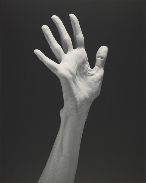 , 'Lucinda's Hand,' 1985, Los Angeles County Museum of Art