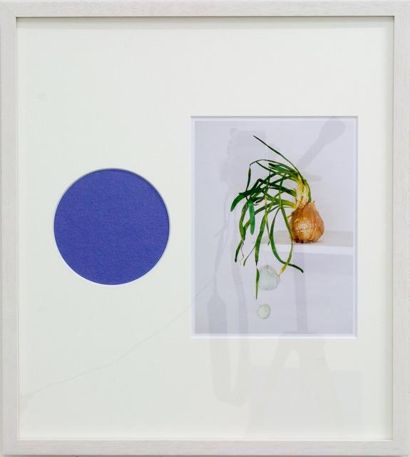 , 'Sleeping beauty, purple circle,' 2013, XYZ collective