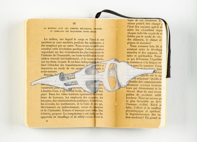 Michelangelo Penso, 'Physiques et chimiques ont transformé notre milieu', 2010, Martini Studio d'Arte
