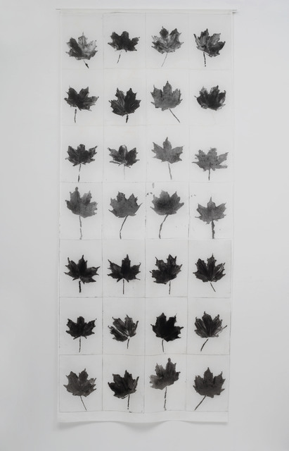 , 'Norway Maple,' 2015, Seager Gray Gallery