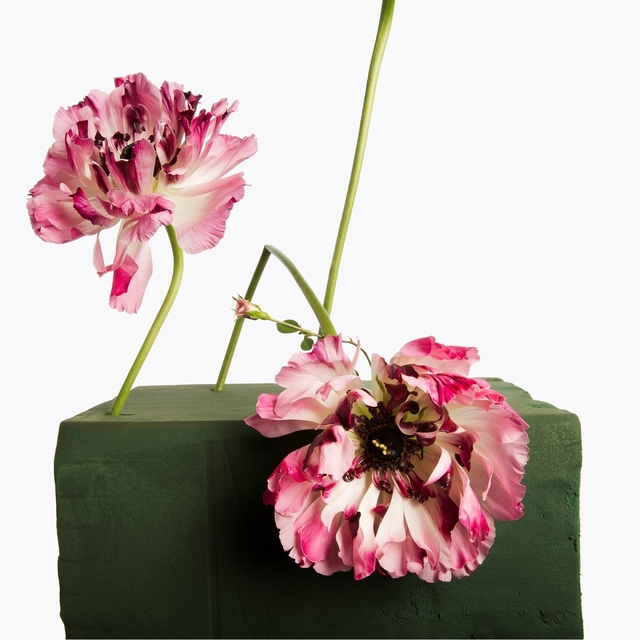 , '2 Two Tone Peonies, 1 Pink Miniature Rose,' 2013, Gagosian