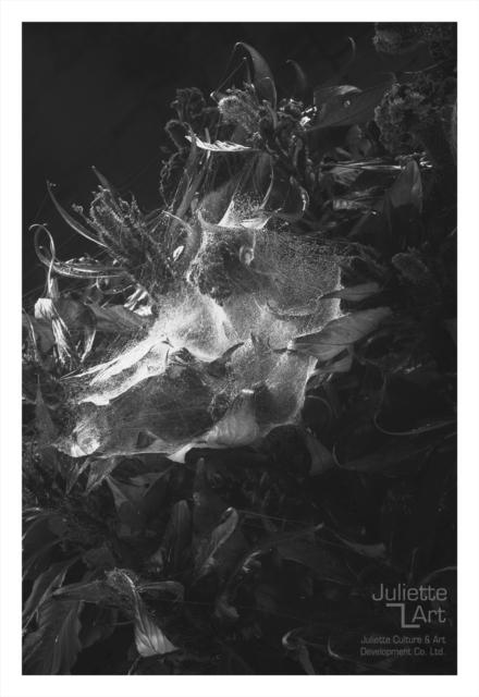 , 'The Light of Dark Night No.13,' 2013, Juliette Culture and Art Development Co. Ltd.