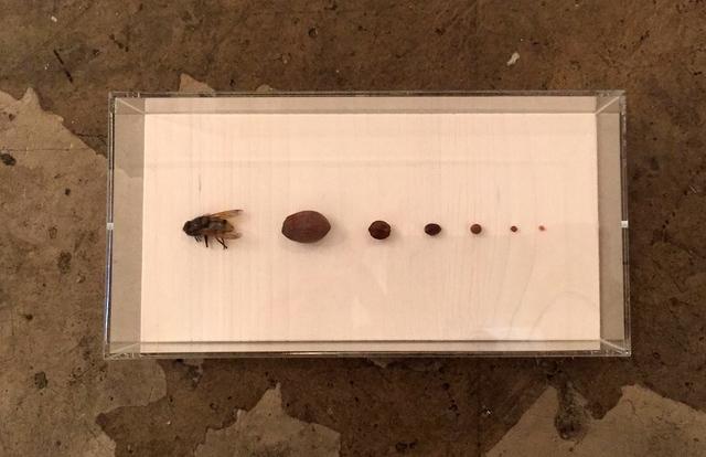 , 'Neuordnung I,' 2015, Galerie SOON
