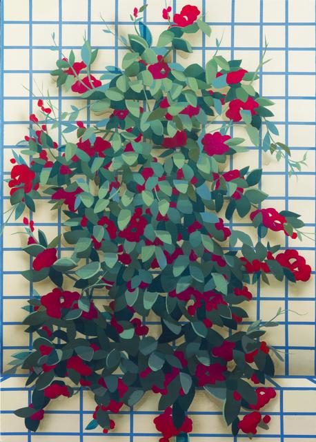 , 'Improvised Garden (Bougainvillea),' 2016, Edward Cella Art and Architecture