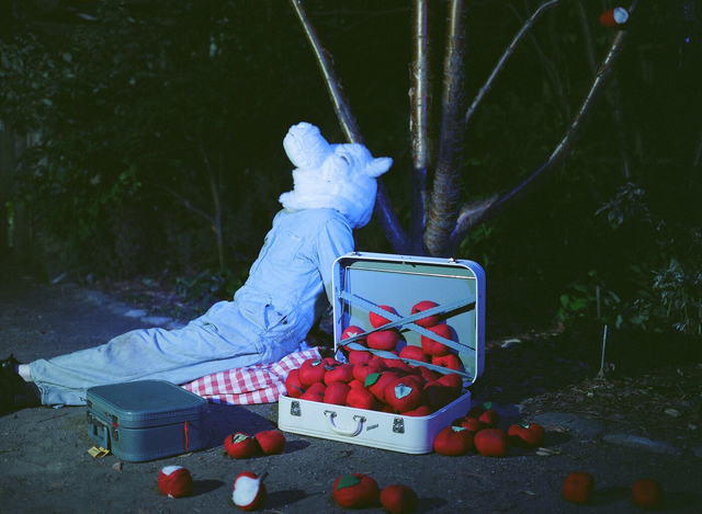 , 'Wolf Sitting with Apples,' 2009, dc3 Art Projects