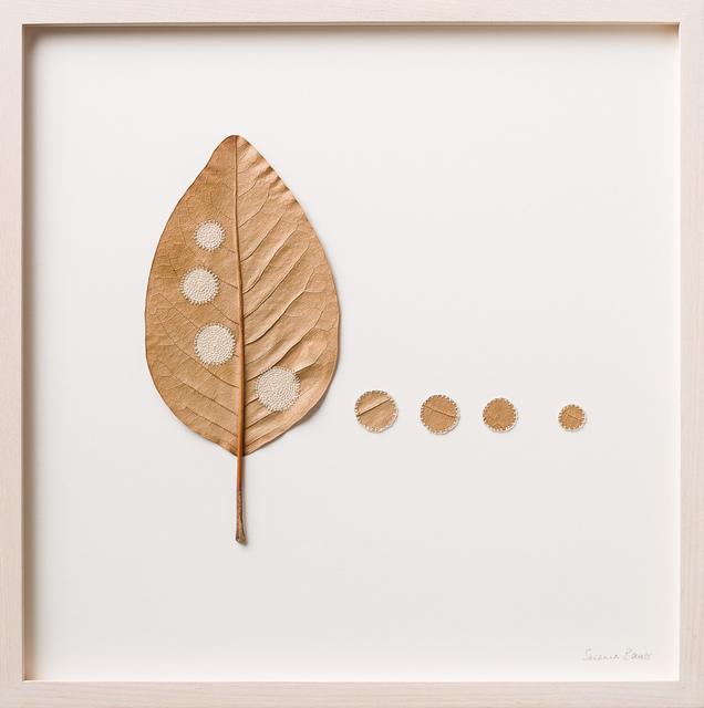 , 'Four Circles,' 2016, Muriel Guépin Gallery