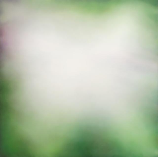 , 'Redwoods,' 2018, Winston Wächter Fine Art