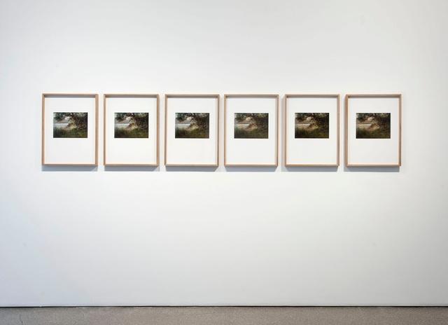, 'Germinal,' 2011, Galerie Nordenhake