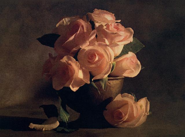 , 'Romantic Roses II,' , Gallery 270