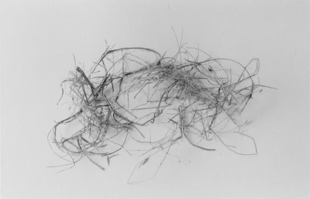 , 'The End (Nest Five),' 1999, John Davis Gallery