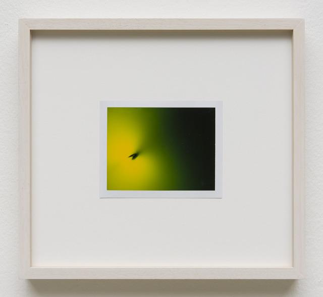 , 'Photuris #2,' 2013, Galerie Crone