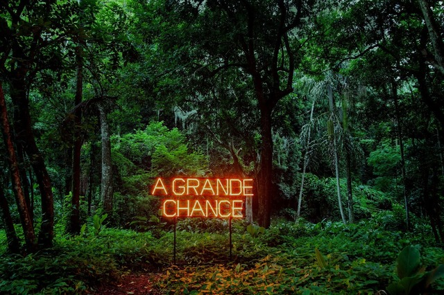 , 'Chance,' 2015-2017, Galeria Millan