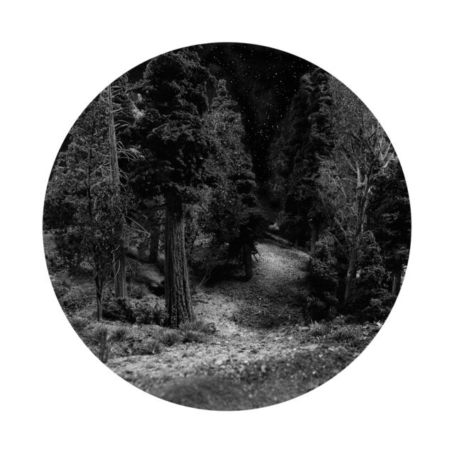 Bill Finger, 'Trail Head III', 2015, Circuit Gallery