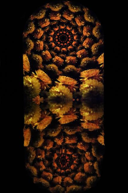 , 'Unkle Visuals,' , Lazinc