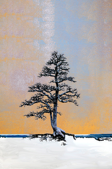 , 'Dreamscape: Northern Light,' 2017, Susan Calloway Fine Arts