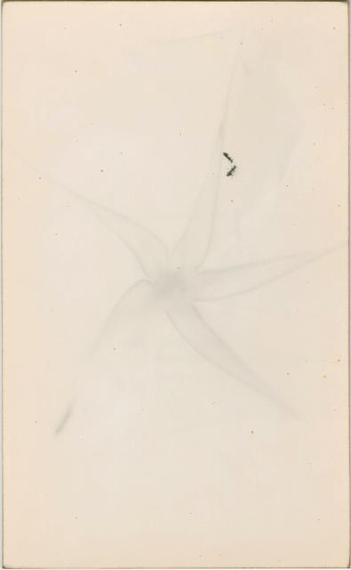 Yamamoto Masao, '1288, from Nakazora', Etherton Gallery