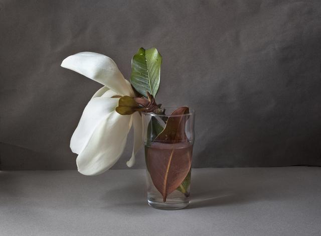 , 'Magnolia (Edition 7 copies) ,' 2012, Galería Marita Segovia