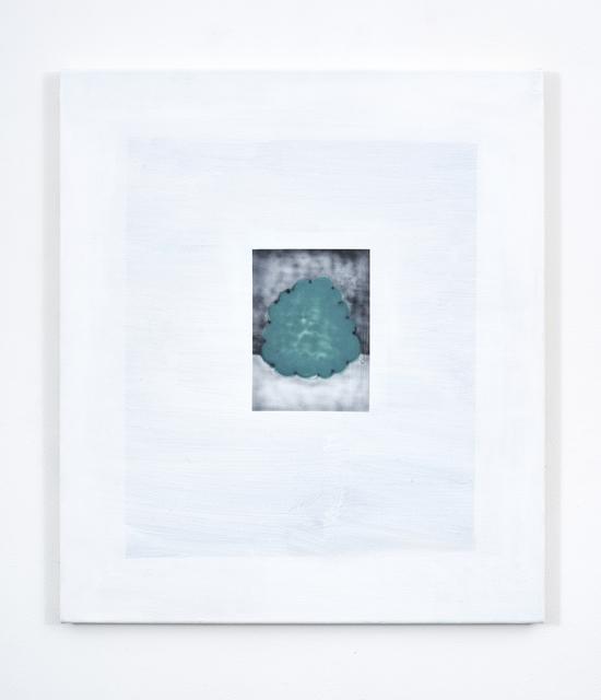 , 'Bush,' 2017, UNION Gallery