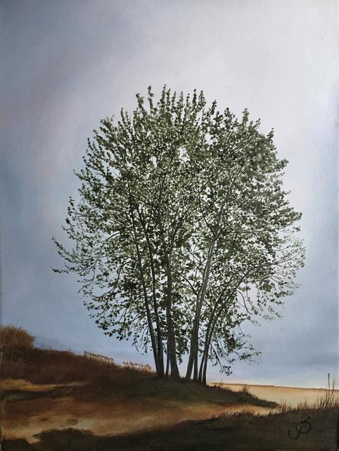 , 'Sherwood Fog,' 2019, The Galleries at Salmagundi