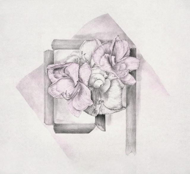 , 'Amaryllis I. Creación de una bandera,' 2007, Lucia Mendoza